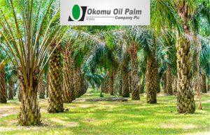 Okomu announces N23.63bn revenue, PAT rises by 137.98%